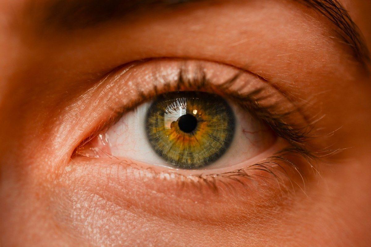 Oczy to niezwykły organ. To dokładnie dzięki nim rozróżniamy.